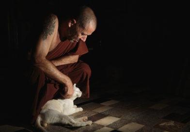 Debunking Monking Part II: monk, drugs, Rock 'n' Roll